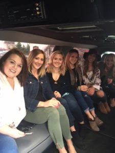 Limo tour of Lake Erie Wine Country