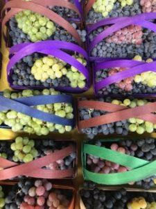 Orton's Market In North East, PA Sells Seasonal Produce
